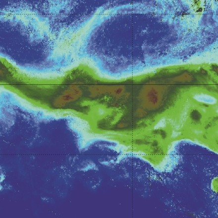 Track the plankton drift
