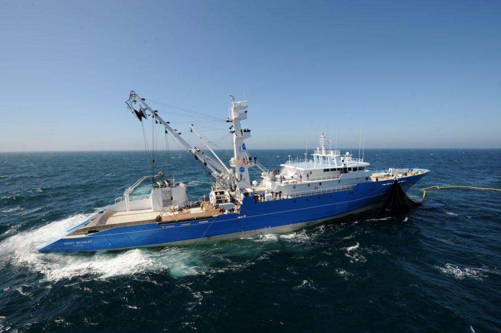 CatSat - Oceanography for fishing